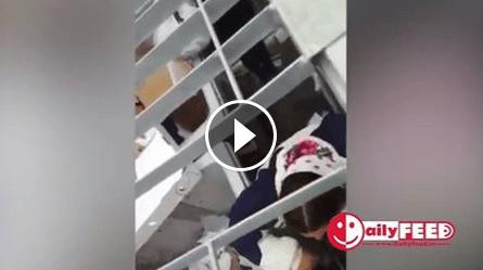 SOCANT! Doua femei romance au fost inchise intr-o cusca ca niste animale salbatice in Italia (VIDEO)